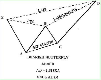 Бабочка Пасавенто (Идеальная модель Бабочки)