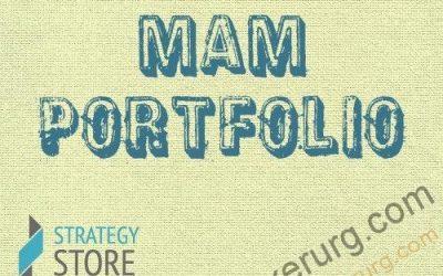 Strategy Store MAM портфель