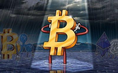 Отмена Segwit2x сыграла на руку Bitcoin Cash